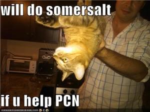 Pootie Does Somersault